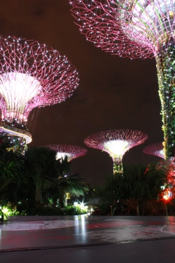 Gardens By The Bay Total View