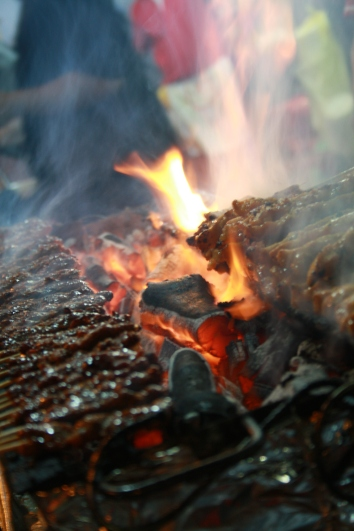 Sate in the fire